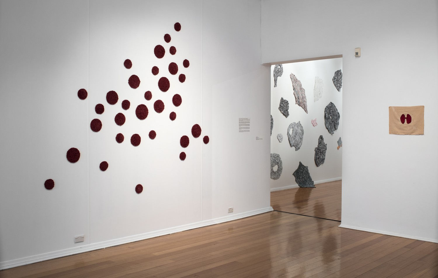 lumen, whitewash, blood is (vi) - installation view by Michele Elliot